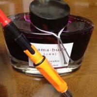 色雫の山葡萄